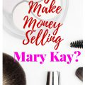 Can you make money selling Mary Kay