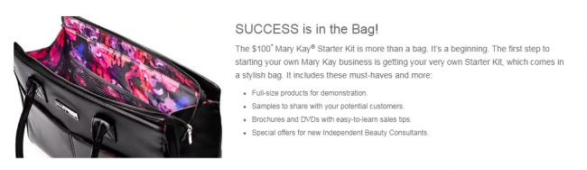 mary kay starter kit