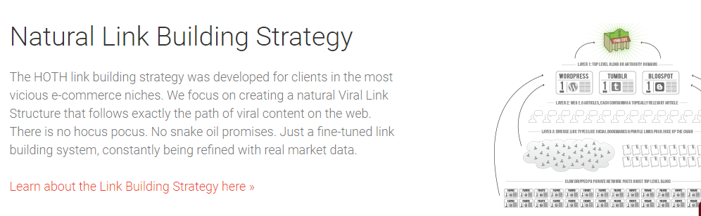 natural link building strategy