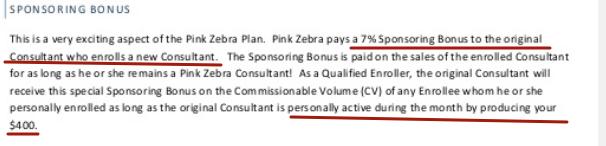 zebra sponsoring bonus