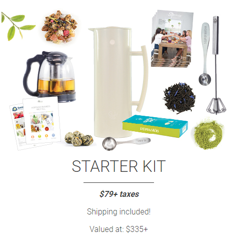 steeped tea starter kit