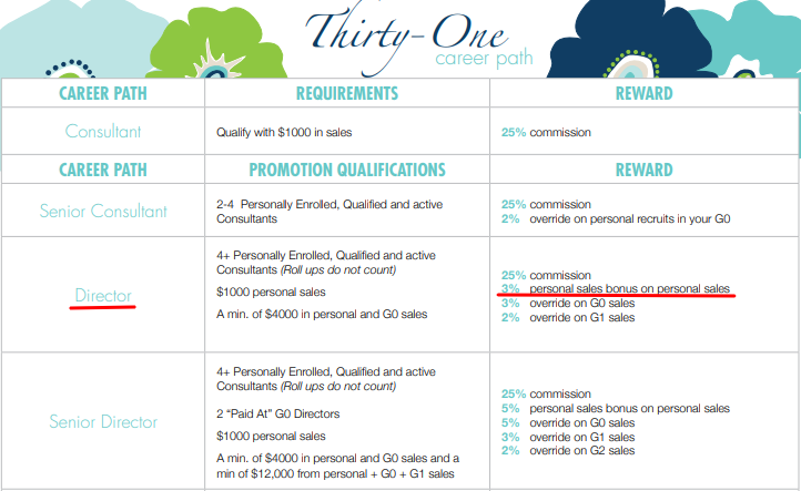 thirty one compensation plan