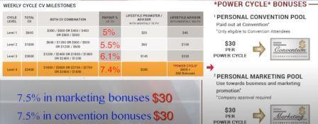 opulence compensation plan