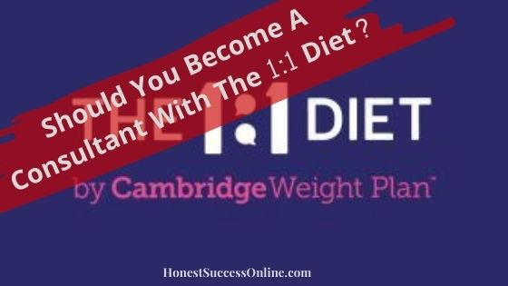 one2one diet mlm review